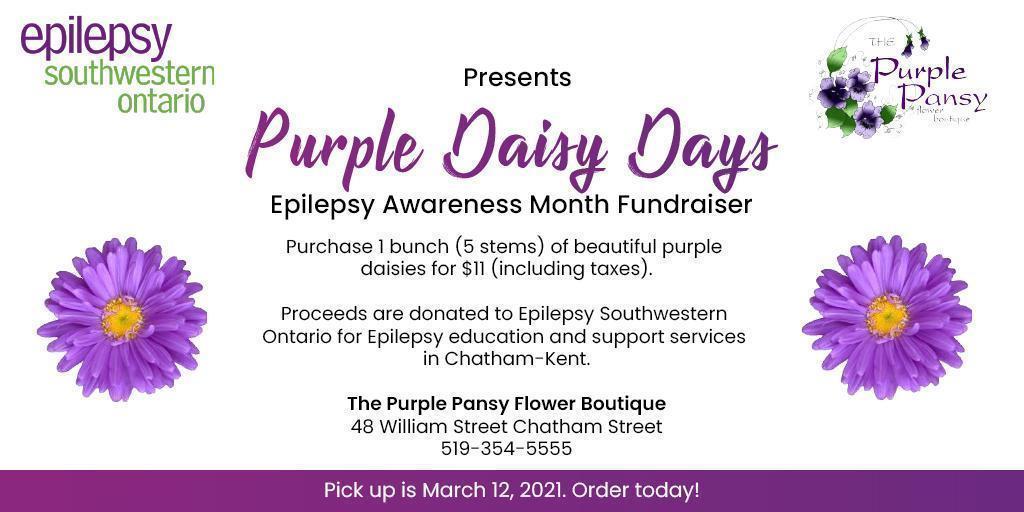 Purple Daisy Days